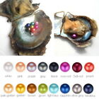 3x Akoya Oysters With Unicorn Color Round Pearl At Least 1 Pearl In Every 6-8mm