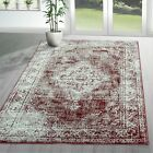 Traditional Vintage Style Persian Rug Design Oriental Faded Red Area Carpet