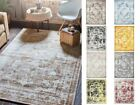 Traditional Inspired Persian Faded Transitional Area Rug Multi Color ALL SIZES