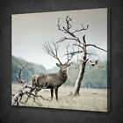 DEER BLUE BIRD ANTLERS BRANCHES BOX MOUNTED CANVAS PRINT WALL ART PICTURE PHOTO