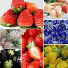 100 Pcs Strawberry Seeds Nutritious Rare Colors Fruit Vegetables Seeds Sanwood