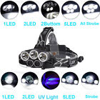 80000LM 5x LED Headlamp 5 Modes Purple/White Light Charge by USB