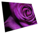 Large Purple flower ROSE floral art Poster Print - PP293