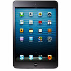 Apple iPad mini Tablet 16GB WiFi - Slate Black (MD528LL/A)