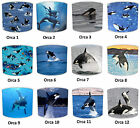 Whale Lampshades Ideal To Match Killer Whale Duvets & Killer Whale Wall Decals.