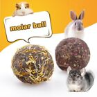 Kyпить US Pet Chew Play Toy Molar Ball Small Rabbit Hamster Guinea Pig,chinchillas Toys на еВаy.соm