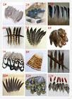 10-100PCS beautiful pheasant tail  peacock feathers 4-20cm/2-8inches