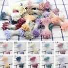 HOT SALE Double Sided Round Flower Stamens Craft Artificial Cards Floral 400X
