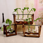 New Vintage Style Glass Tabletop Plant Bonsai Flower Vase Wooden Tray Home Decor