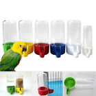 PRACTICAL WATER DRINKER CUP FEEDER DRINKING BOWL FOR BIRD PIGEONS PARROT CLASSY