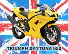 TRIUMPH DAYTONA MOTORCYCLE MOTORBIKE METAL SIGN TIN PLAQUE OTHERS ARE LISTED 616 £6.99 GBP on eBay