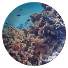 Coral Reef ThermoSaf Dinner Plate - Underwater Photo Dish - Ocean/Nautical Theme