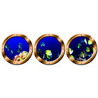 VWAQ Coral Reef Fish Decals, Submarine Portholes, Underwater Ocean Stickers