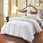 Thicken Polyester Blanket Winter Soft Warm Bed Quilt for Bedroom Bedding NEW image