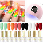 10Pc/Set BORN PRETTY UV Gel Polish 54W UV LED Lamp Nail Dryer Gel Varnish Kit