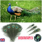 """10-50pcs Peacock Tail Feathers Natural 10-12"""" For Bouquet Diy Home Decoration"""