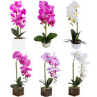 Artificial Butterfly Orchid Flowers Plants In Pot Fake Home- Decor Wedding Party
